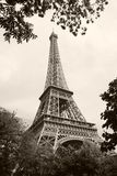 Paris - the Eiffel Tower Royalty Free Stock Photos