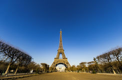 Paris Eiffel Tower at the early morning Stock Photography