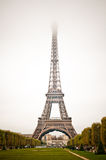 Paris, Eiffel Tower. Frog Royalty Free Stock Image