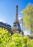 Paris, Eiffel tower on a pring day Royalty Free Stock Images