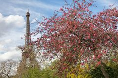 Paris and Eiffel Tower in Spring Stock Photo