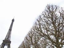 PARIS 2012 Eiffel Tower 4931 Stock Photo