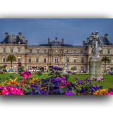 Paris. Field in summer Royalty Free Stock Image