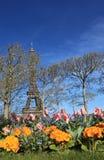 paris fjäder Royaltyfri Fotografi