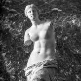 PARIS, FRANÇA - 30 DE AGOSTO DE 2015: Salão do museu do Louvre, Paris da escultura, França fotografia de stock