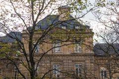 Paris, France - APRIL 9, 2019: Luxembourg Garden. Beatiful Tulips. Paris, France. Europe stock photo