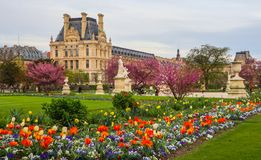 Marvelous spring Tuileries garden and view at the Louvre Palace. Paris France. April 2019 royalty free stock photography