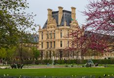Paris / France - April 05 2019. Marvelous spring Tuileries garden and view at the Louvre Palace.  stock photo