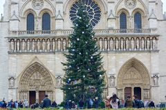 PARIS, FRANCE, DECEMBER 12, 2014: The main Parisian Christmas tree in front of the Notre-Dame cathedral is decorated for winter ho Royalty Free Stock Photos