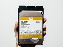 Western Digital Gold HDD disk drive 12 tb man holding. PARIS, FRANCE - FEB 15, 2018: Man holdinng New Western Digital Gold HDD enterprise level 12 terabytes disk Royalty Free Stock Image