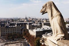 Paris, France, gargoyles in Notre Dame Cathedral. Stock Photos