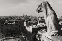 Paris, France, gargoyles in Notre Dame Cathedral. Royalty Free Stock Images