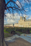 Paris, France. Jardin des Tuileries. Tree in the garden and bright blue sky Stock Photos