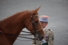 Paris, France - July 14, 2012. Equestrian French Republican Guard takes part in the parade. Royalty Free Stock Images