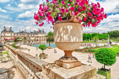 PARIS, FRANCE - JULY 08, 2016 : Luxembourg Palace and park in Pa Royalty Free Stock Images