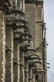 PARIS/FRANCE - 2. Juni 2017: Notre Dame von Paris, von Frankreich, von vertikalen Wasserspeiern, brüllend und von Abstreifenschi lizenzfreies stockfoto
