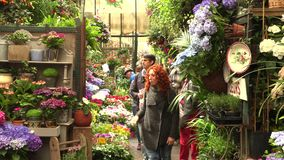 Paris, France, 20 May 2019 - The flower market in Paris located on the Ile de la Cite, between the Notre-Dame Cathedral. And Sainte-Chapelle chapel, 4k footage stock video