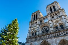 Cathedral Notre Dame de Paris with the Christmas tree Royalty Free Stock Images