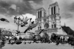 Paris, France, Notre Dame Cathedral, October 26, 2017 Front view of the Cathedral in black and white royalty free stock image
