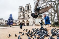 Paris France, November 2014: Holiday in France - Notre-Dame Cathedral and tourist during winter Christmas. Notre-Dame Cathedral and tourist during winter stock photos