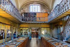 Paris, France - October 16, 2016: Gallery of Palaeontology and Comparative Anatomy in Paris, with unidentified people. Is a part o Royalty Free Stock Images