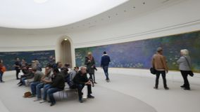 Paris Orangerie Museum stock video