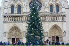 PARIS, FRANKREICH, AM 12. DEZEMBER 2014: Der Pariser hauptsächlichweihnachtsbaum vor der Notre-Dame-Kathedrale wird für Winter ho Lizenzfreie Stockfotos