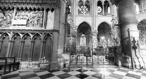 PARIS, FRANKREICH - DEZEMBER 2012: Innenraum von berühmtem Notre Dame Cat Stockbilder