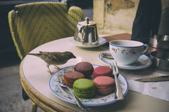 Paris, Frankrike - April 21, 2016 - morgon i Paris med den Macaron kakan och Darjeeling te Royaltyfri Foto