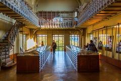 Paris Frankrike - Oktober 16, 2016: Galleri av Palaeontology och komparativanatomi i Paris, med oidentifierat folk Är en delnolla Royaltyfri Fotografi