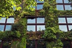 Paris - grön vägg på delen av yttersidan av Quaien Branly Mu Arkivfoton