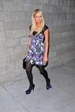 Paris Hilton Fotos de Stock