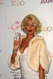 Paris Hilton Photo stock