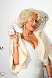 Paris Hilton Royalty Free Stock Images