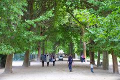 Paris - Garden of Plants. PARIS - JULY 24: People stroll in Garden of Plants on July 24, 2011 in Paris, France. Garden of Plants is popular among tourists in Royalty Free Stock Images