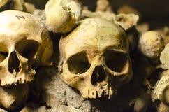 Paris katakombskallar Arkivfoto