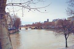 Paris, le pont au-dessus de la rivière la Seine Photo libre de droits