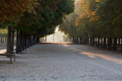 Paris - Luxembourg Gardens Royalty Free Stock Photo