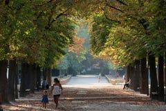 Paris - Luxembourg Gardens Stock Photo