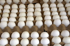 Paris market eggs Royalty Free Stock Image