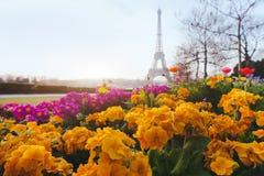 Paris na mola Imagem de Stock Royalty Free