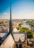 Paris from Notre Dame Stock Image