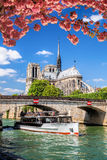 Paris, Notre Dame cathedral with boat on Seine, France Royalty Free Stock Photo
