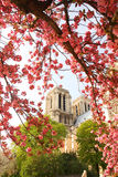 Paris, Notre Dame cathedral in spring time Royalty Free Stock Photography