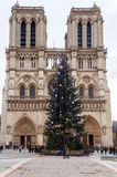 Paris. Notre Dame. Christmas. Paris, France - December 20, 2014: The area around the Cathedral of Notre Dame with the Christmas tree Royalty Free Stock Images