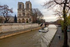 Paris. Notre Dame. Christmas. Stock Image