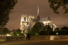 Paris - Notre-Dame in the night. Paris - Notre-Dame cathedral in the night Royalty Free Stock Images
