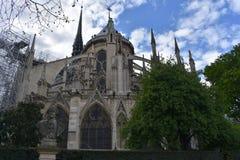 paris Notre paniusi katedra fotografia royalty free