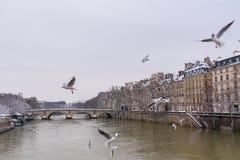 Paris, panorama do Seine imagem de stock royalty free