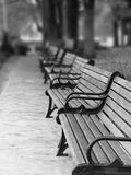Paris Park Benches. A row of wood and metal benches along a walkway in a park. In black and white with selective blur Royalty Free Stock Photography